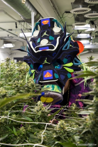 WEB 174 DB4 Brainiac Gas Mask 018